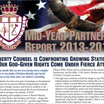 Mid-Year Partners' Report 2013-2014